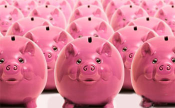 Photo of funny pink piggy banks